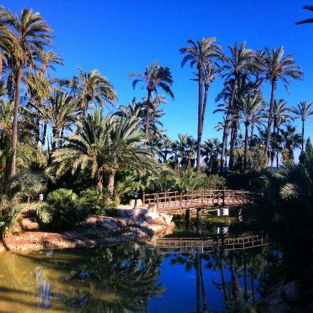 12 Amazing Things to Do in Costa Blanca