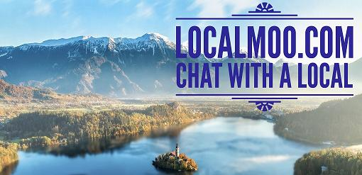 chat with a local with Local Moo