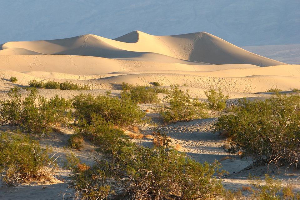 Panamint Dunes, Death Valley National Park